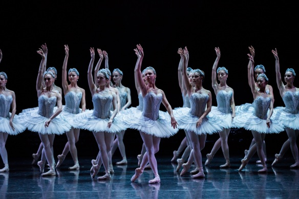 Swan Lake Baynes 2016_Photo Kate Longley-0G4A25402016204